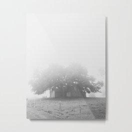 chêne brouillard Metal Print