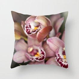Sweet Pink  Throw Pillow