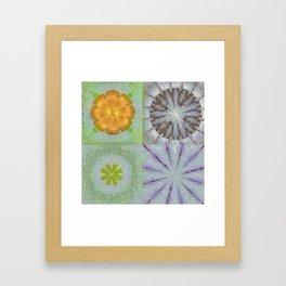 Triakisoctahedrid Unclad Flowers  ID:16165-023954-27470 Framed Art Print