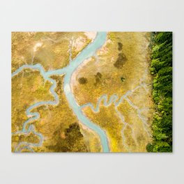 Aerial Study 1 Canvas Print