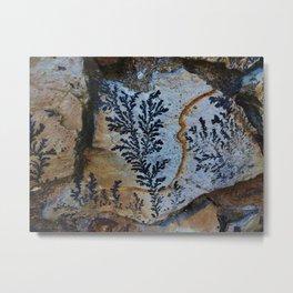 Nature Picks up her Brush 2 Metal Print