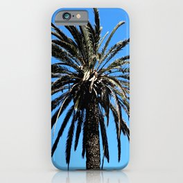 Palm Tree with clear blue sky as a tropical theme iPhone Case