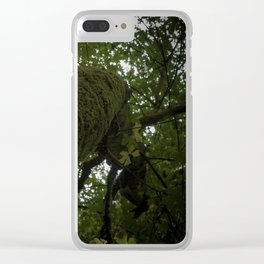 Moss on Tree-Muir Woods, California Clear iPhone Case