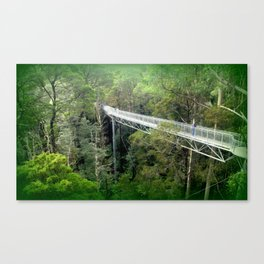 Otway Fly Tree Top Walk Canvas Print