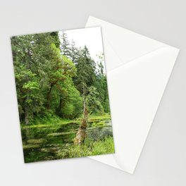 Hoh Rainforest Scene Stationery Cards