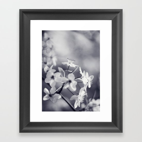 Pear Blossoms in Black and White Framed Art Print