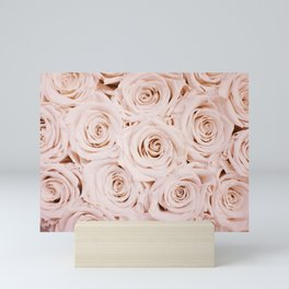 Beautiful Pink Roses Mini Art Print