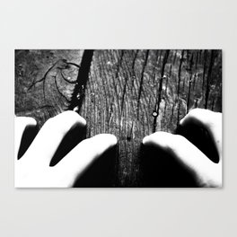 Whiteout: Drag Me to Hell Canvas Print