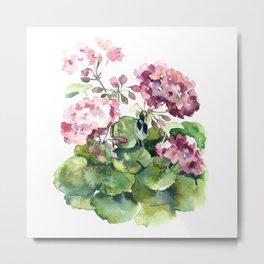 Watercolor pink geranium flowers aquarelle Metal Print
