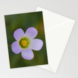 lilac oxalis close up Stationery Cards