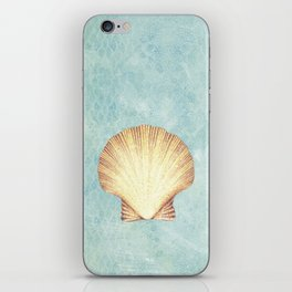 concha de mar iPhone Skin