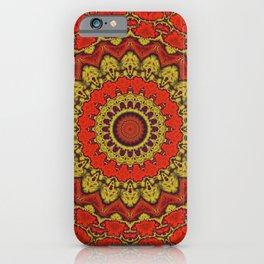 Mandala Fractal in Indian Summer 03 iPhone Case