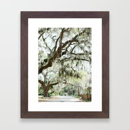 Southern Spanish Moss Framed Art Print