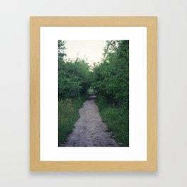 Little Path Framed Art Print