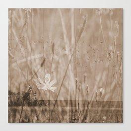 Landscape behind the dike Canvas Print