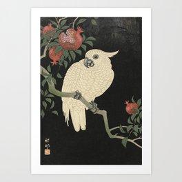 Cockatoo and Pomegranate 柘榴に鸚鵡 Art Print