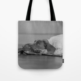 Please, play with me Tote Bag