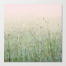 Idyllic Grass Field in the Morning Sun Canvas Print