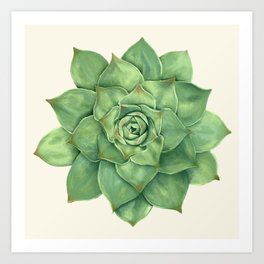 Green Hand-Drawn Succulent Digital Painting Art Print