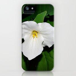 Trillium in the spotlight iPhone Case