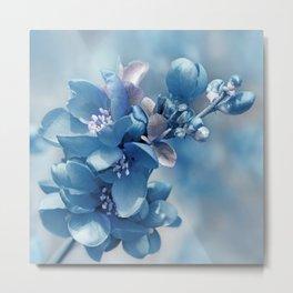 Blue 81 Metal Print