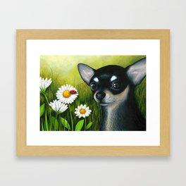 Black Chihuahua Dog Framed Art Print