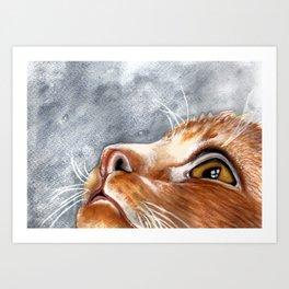 Ginger Cat Watercolour Painting Art Print