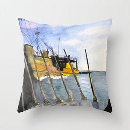 marine survey Throw Pillow