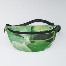 Rain and Nature Fanny Pack