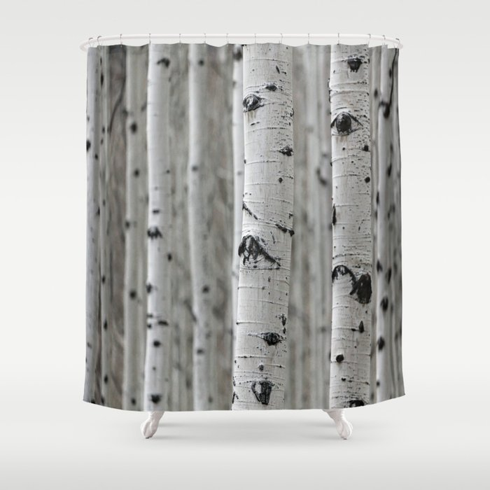 Birch Trees Shower Curtain By Lindseyjennings