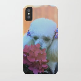 Toy Poodle in the garden iPhone Case