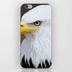 Bald Eagle iPhone & iPod Skin