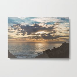 point dume Metal Print