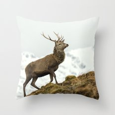 Red Deer Stag in Winter Throw Pillow