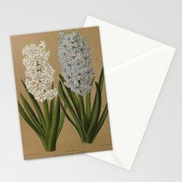 Arentine H. (1836-1915) - Haarlem's Flora 1872 - Hyacinths 3 Stationery Cards