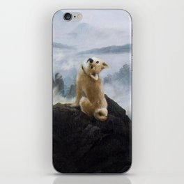 The Wanderer Above the Sea of Doge iPhone Skin