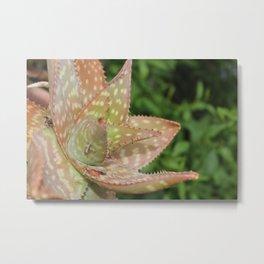 Extreme Nature Metal Print