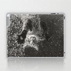 Cat Paws and Plays Laptop & iPad Skin