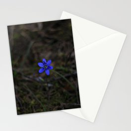 Anemone Hepatica Stationery Cards