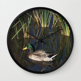 The Duck On The Pond At Papago Park Wall Clock