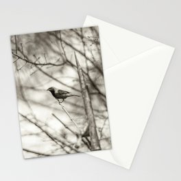 Bird - Black and White Stationery Cards