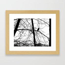 The Raven #2 Framed Art Print
