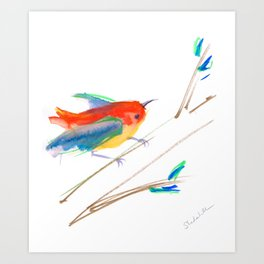 Bird on a Branch n Bright Colors Art Print