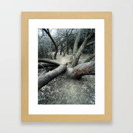 The Dead Canyon Framed Art Print