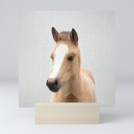 Baby Horse - Colorful Mini Art Print