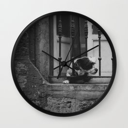 Dog looking for freedom Wall Clock