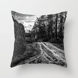 Poltery Site (Wood Storage Area) After Storm Victoria Möhne Forest 5 bw Throw Pillow