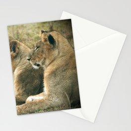 Lion Cub Twins Stationery Cards