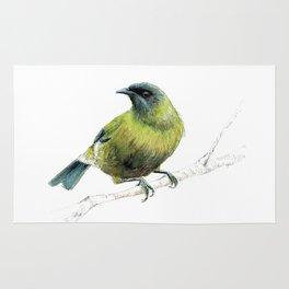 Korimako, the Bellbird Rug