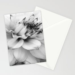 FLOWER MACRO - 11118/1 Stationery Cards